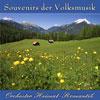 Orchester Heimat-Romantik - Souvenirs der Volksmusik Vol. 1